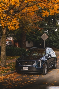 2019 Cadillac XT4-16